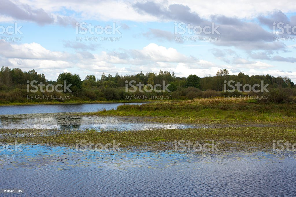 Panorama meander river with reed on northern part of Ukraine stock photo