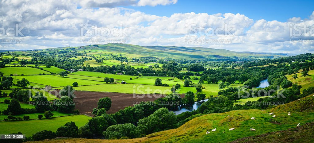 Panorama Meandering River making its way stock photo