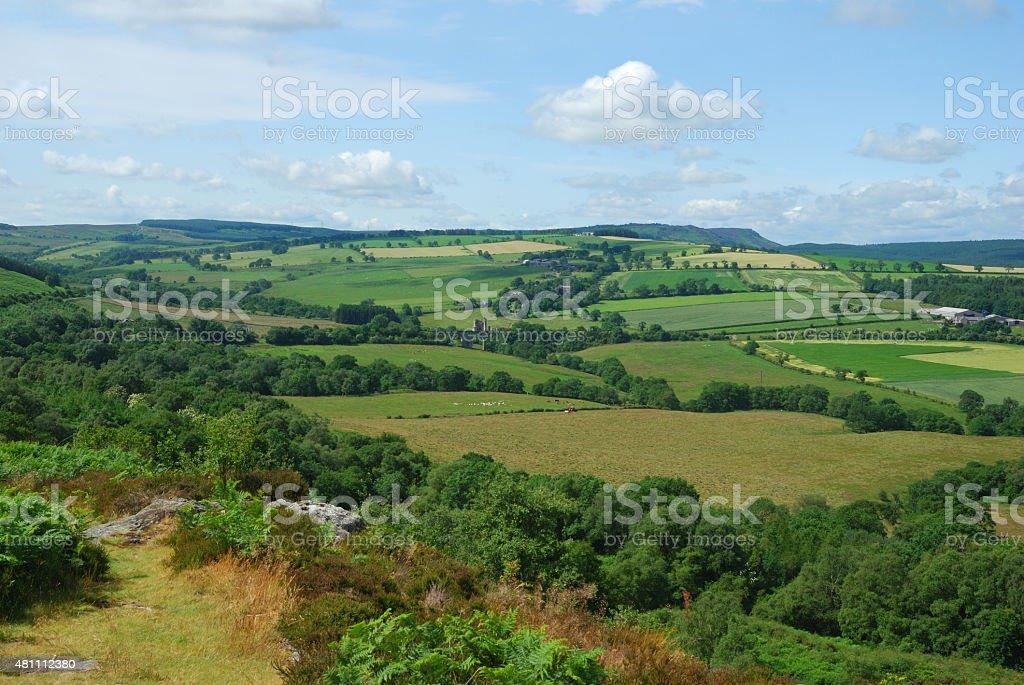 panorama near Edlingham castle & village,Northumberland stock photo