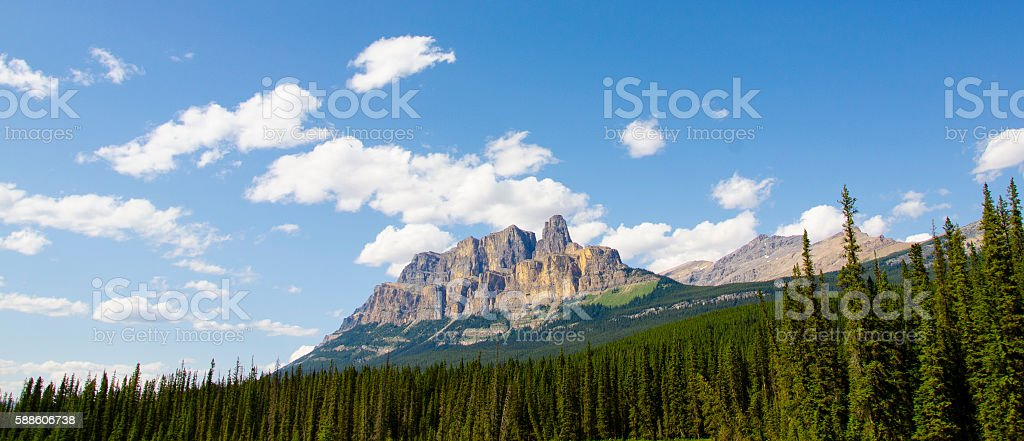 Panorama of a Mountain Over Trees stock photo