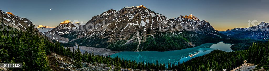 panorama of blue-colored Peyto lake at sunrise with full moon. stock photo