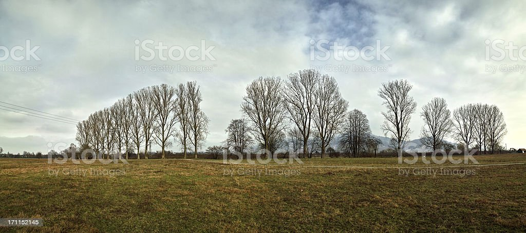 panorama of cold day in january with clouds stock photo