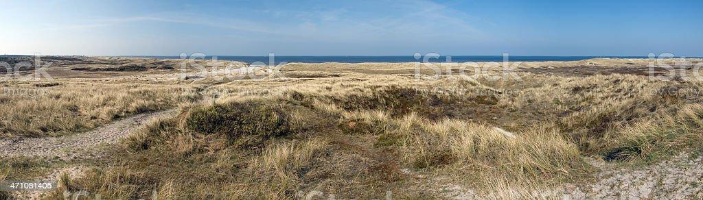 Panorama of 'De Kerf' near Schoorl (the Netherlands) stock photo