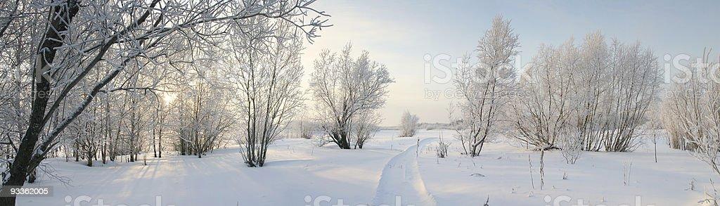Panorama of freezing day. royalty-free stock photo