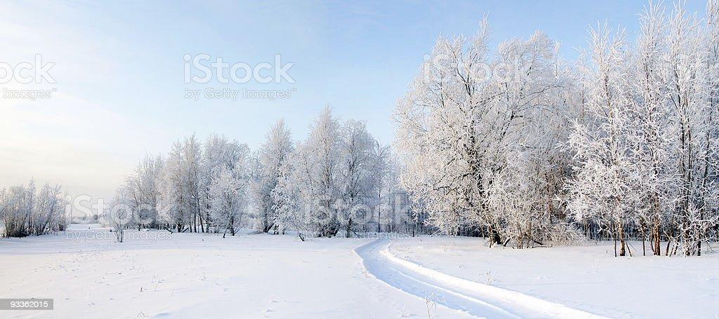 Panorama of freezing day. stock photo