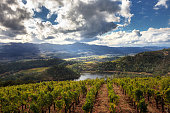 Panorama of Howell Mountain, Napa Valley wine country in autumn