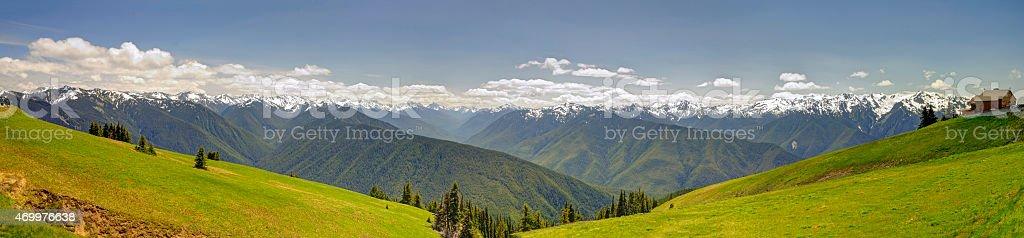 Panorama of Hurricane Ridge stock photo