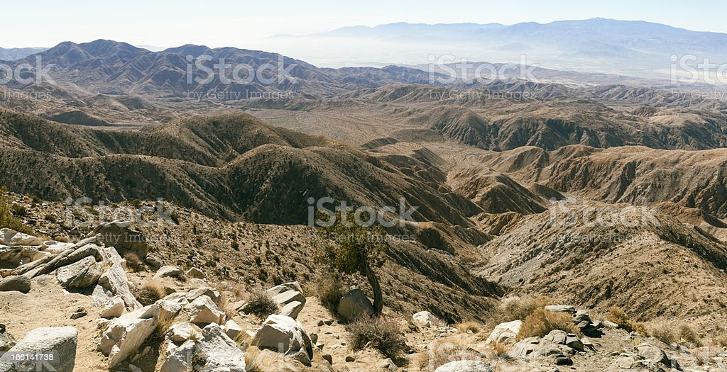 Panorama of Joshua Tree National Monument. royalty-free stock photo