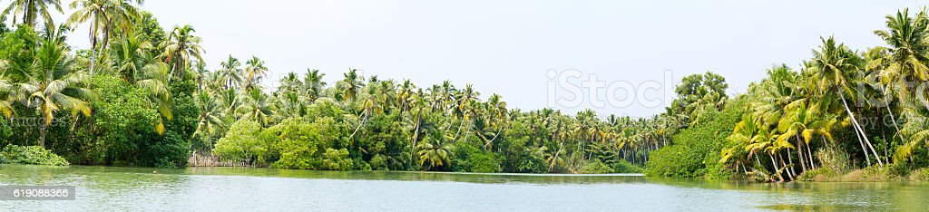 Panorama of Kerala backwaters jungle, chain of lagoons and lakes stock photo