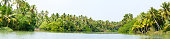 Panorama of Kerala backwaters jungle, chain of lagoons and lakes
