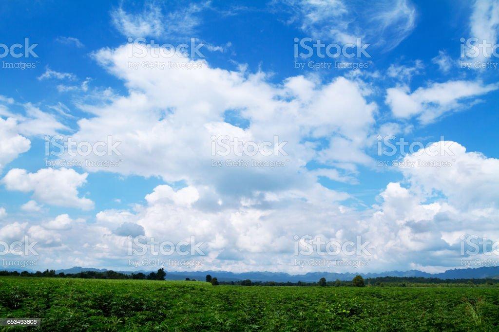 Panorama of landscape in Kanchanaburi stock photo