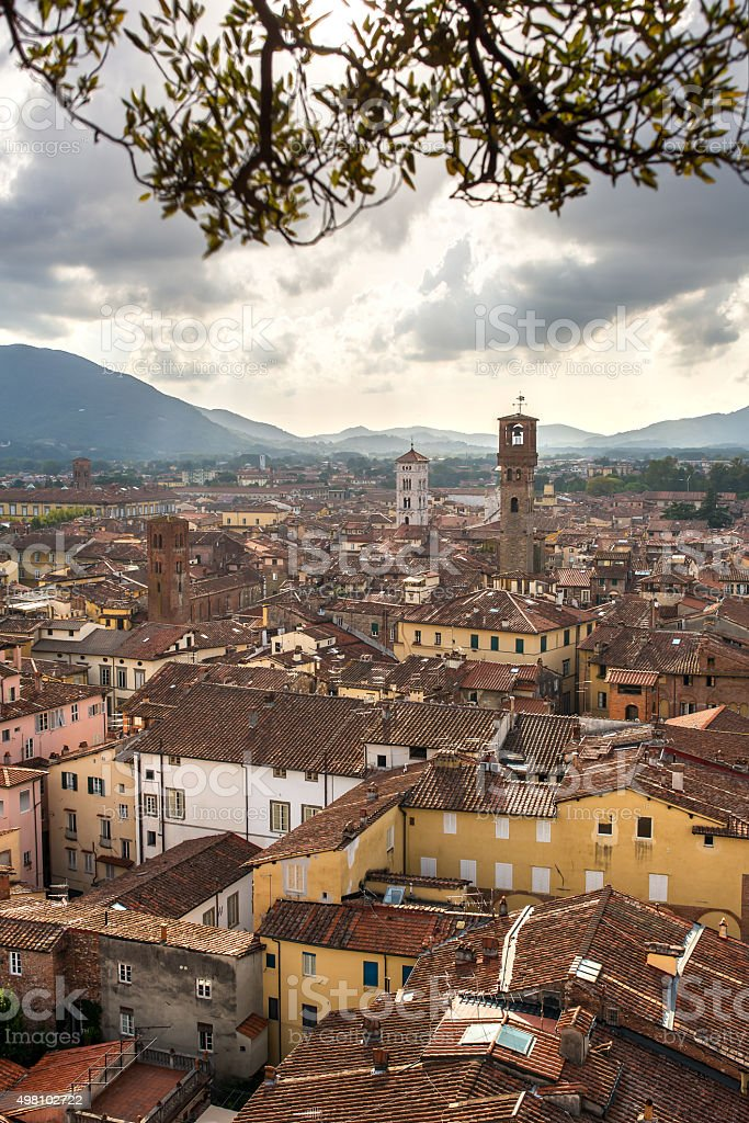 Panorama of Lucca from the Torre Guinigi, Italy stock photo