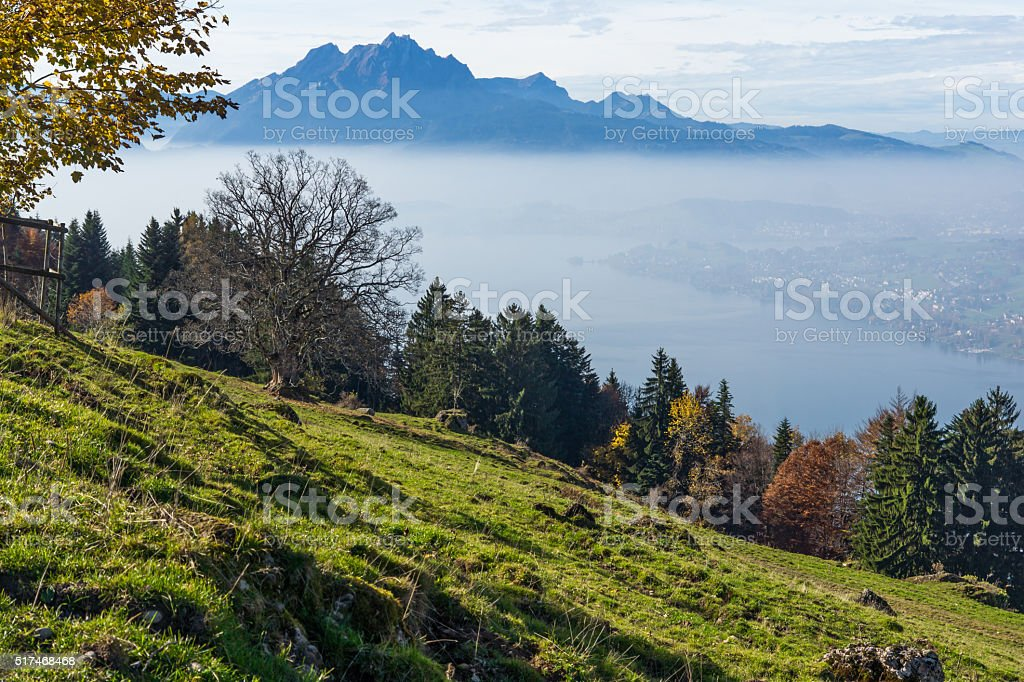 Panorama of Mount Pilatus and Lake Lucerne covered with frog stock photo