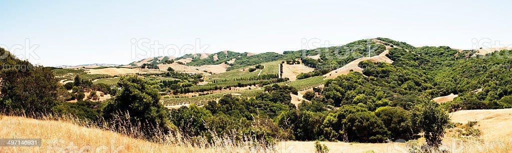Panorama of Petaluma Valley stock photo