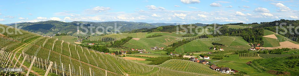 panorama of rural landscape in Black Forest with vineyard royalty-free stock photo