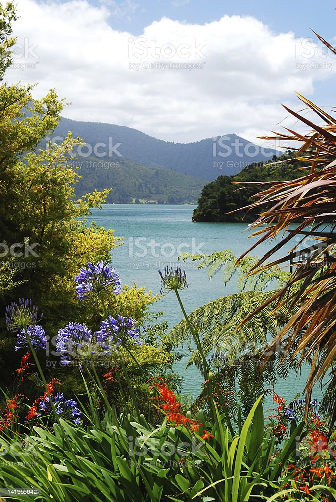 Panorama of scenic Queen Charlotte sound. Marlborough. New Zealand royalty-free stock photo