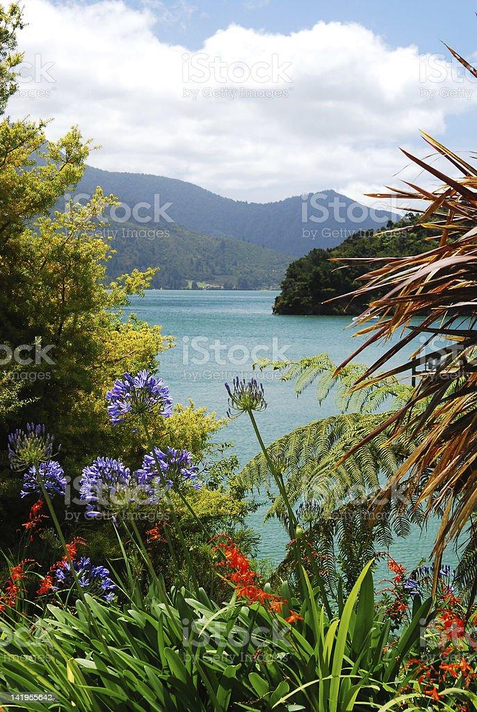 Panorama of scenic Queen Charlotte sound. Marlborough. New Zealand stock photo