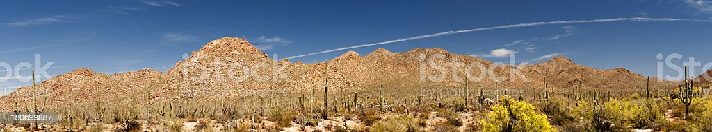 Panorama of Sonoran Desert Landscape royalty-free stock photo