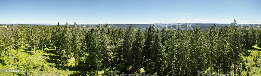 panorama of Summerday in Black Forest with view over trees royalty-free stock photo