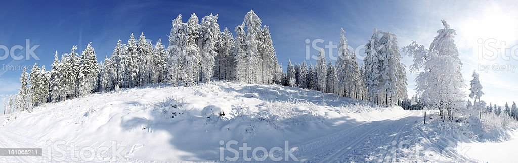 panorama of sunny winterday with cross country track royalty-free stock photo