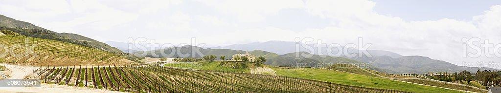 Panorama of Temaluca Valley Wainery stock photo