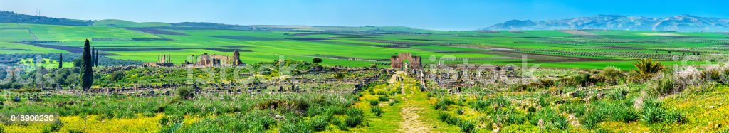 Panorama of the antique city of Volubilis, a UNESCO heritage site in Morocco stock photo