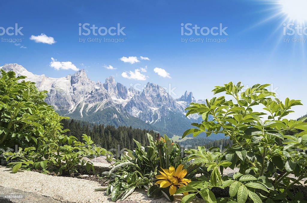 Panorama of the Pale di San Martino stock photo