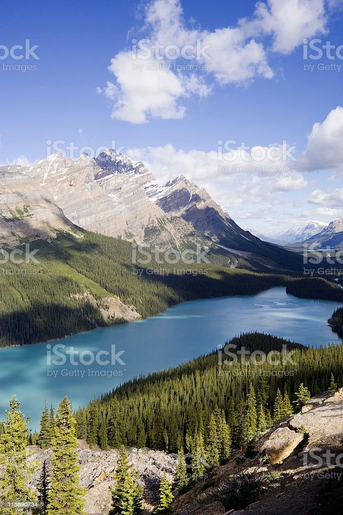 panorama of the peyto lake royalty-free stock photo