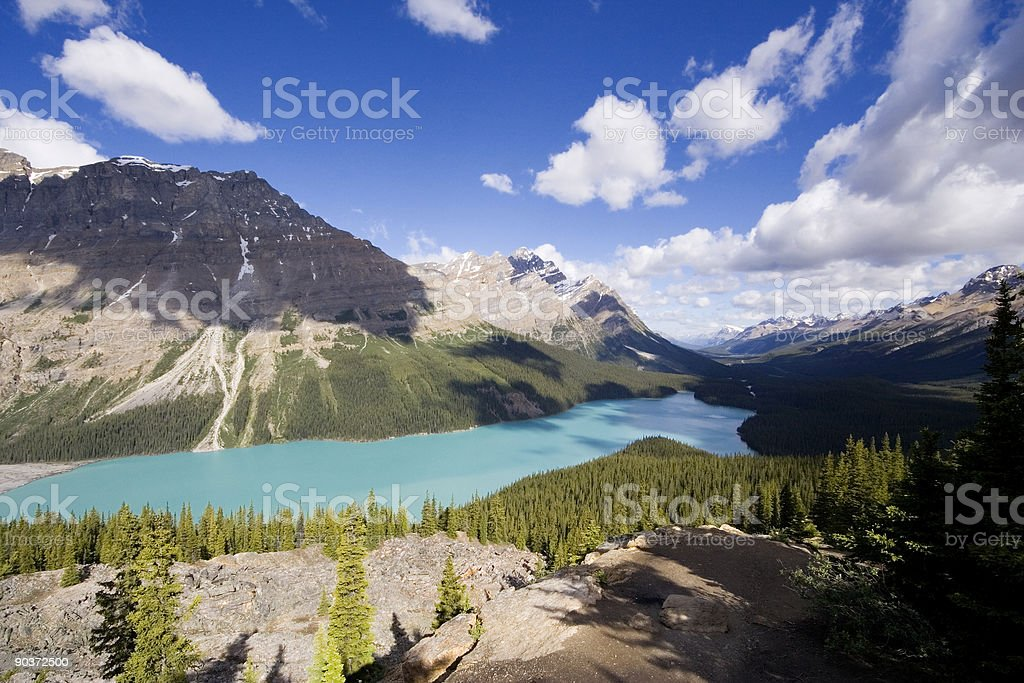 panorama of the peyto lake stock photo