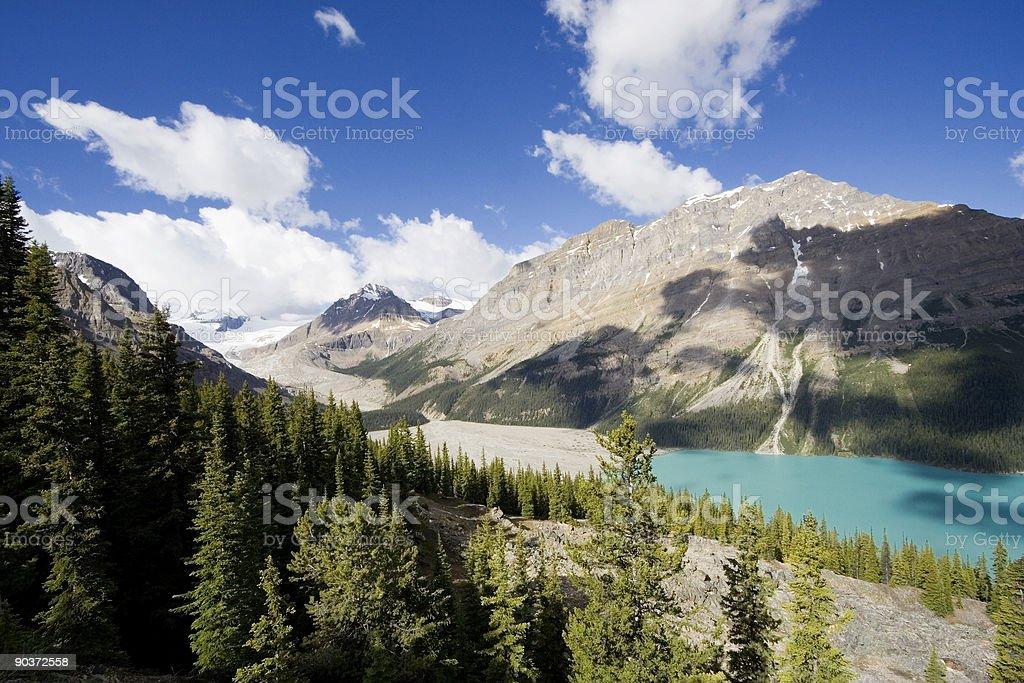 panorama of the peyto lake royalty-free stock photo