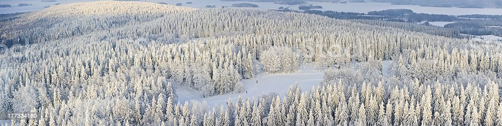 Panorama of winter Finland stock photo