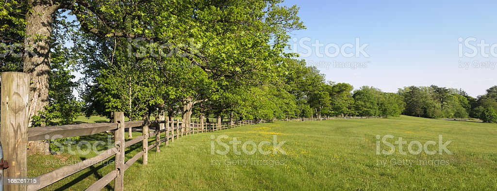 Panorama photo of a green field and fence with trees stock photo