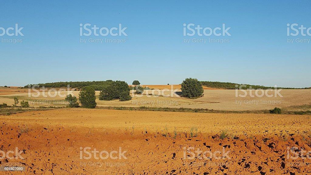 Panorama Recently Plowed Farmland  - Tierras de Cultivo Aradas stock photo