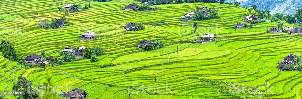 Panorama small village on steppe terraces stock photo