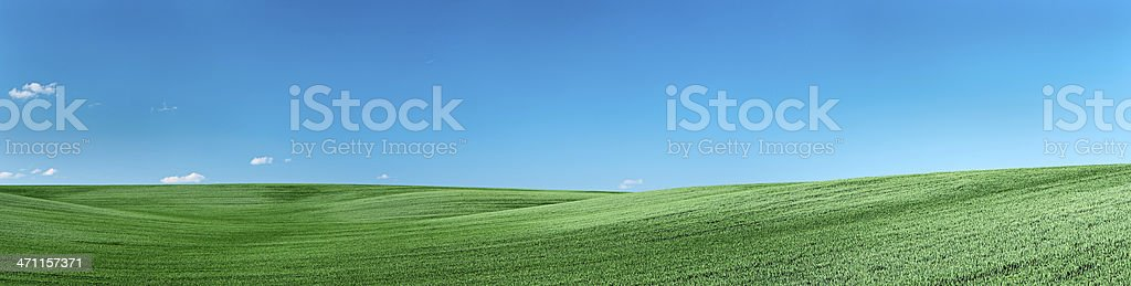 Panorama - spring landscape royalty-free stock photo