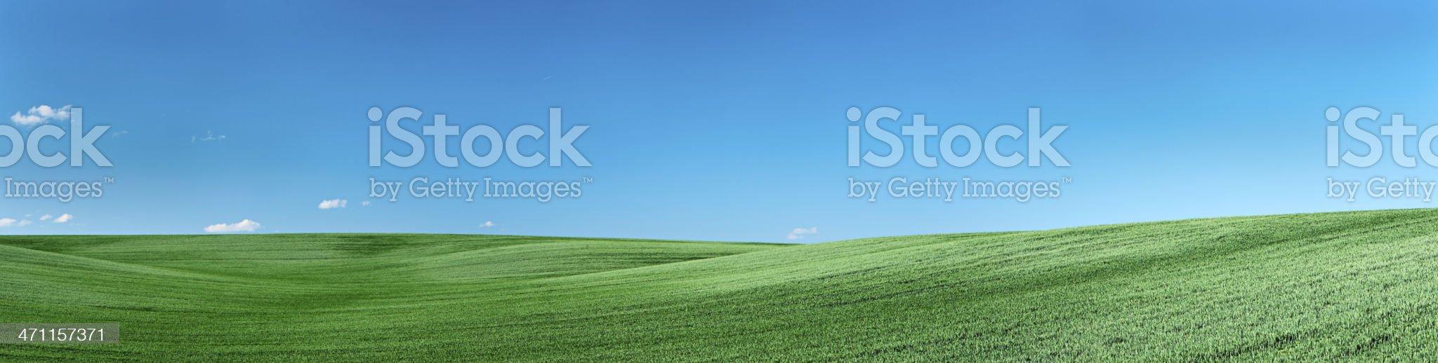 Panorama - spring landscape royalty-free stock photo