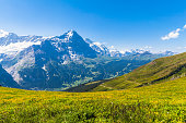 Panorama view of Eiger and some others peaks