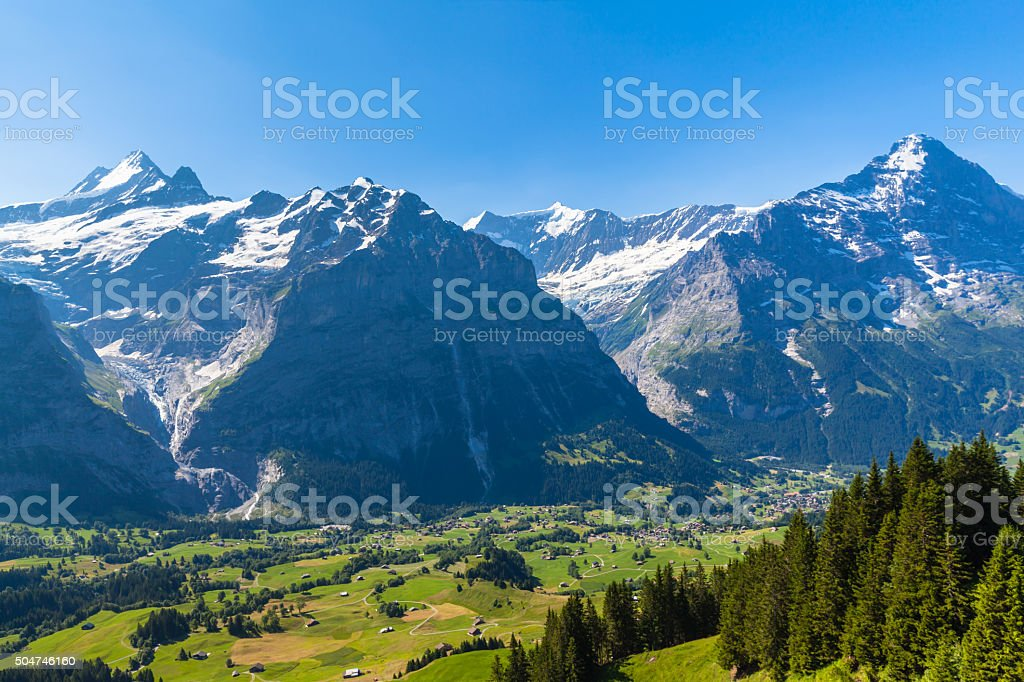Panorama view of Schreckhorn, Fiescherwand, Eiger stock photo