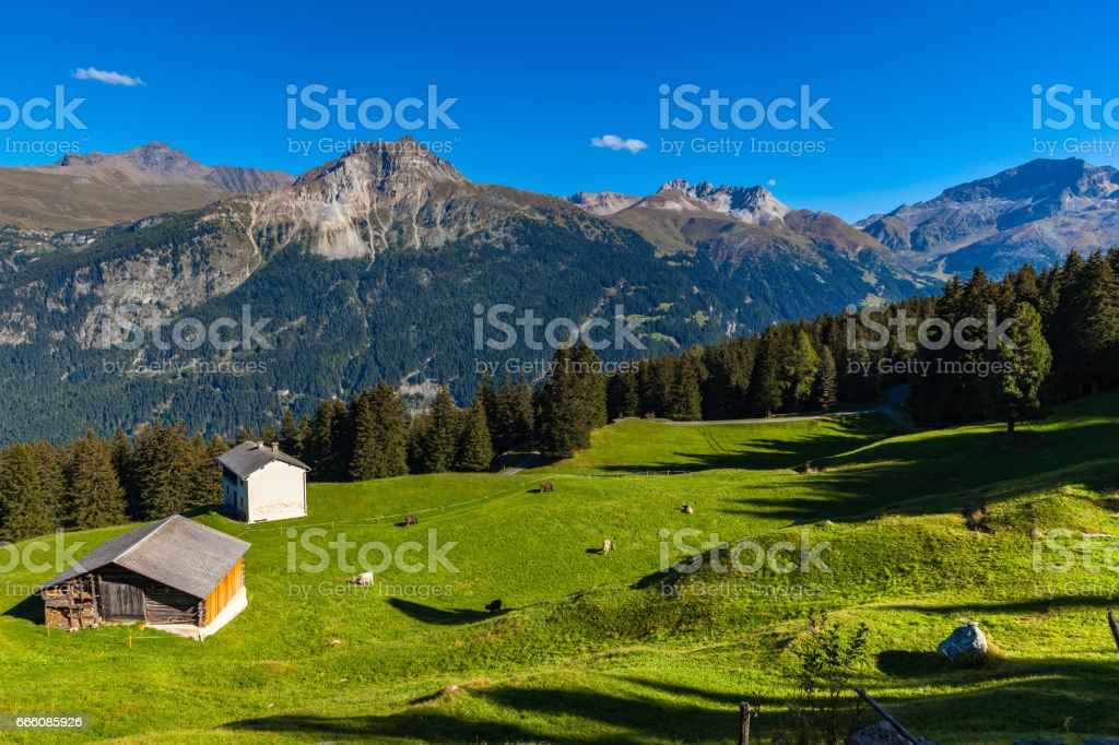 Panorama view of Swiss Alps in Grisons stock photo