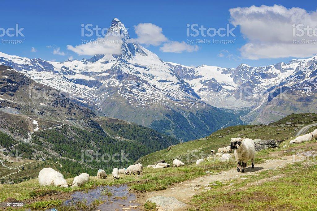 Panorama view of the Matterhorn - Zermatt, Switzerland stock photo