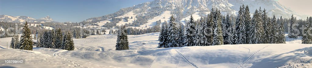 HDR Panorama Winter Landscape royalty-free stock photo