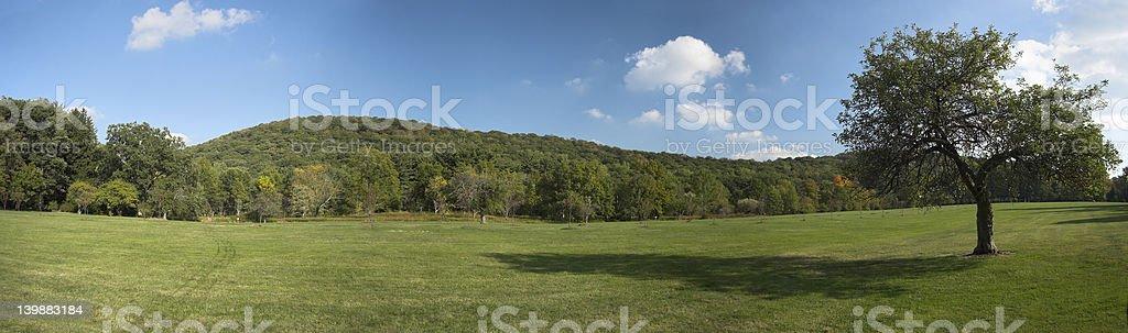 panorama with apple tree royalty-free stock photo