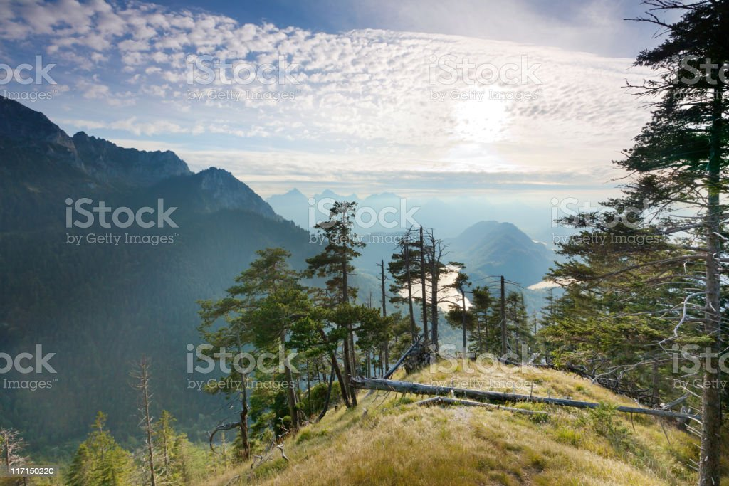 panoramic alpine view in bavaria, germany, alps stock photo