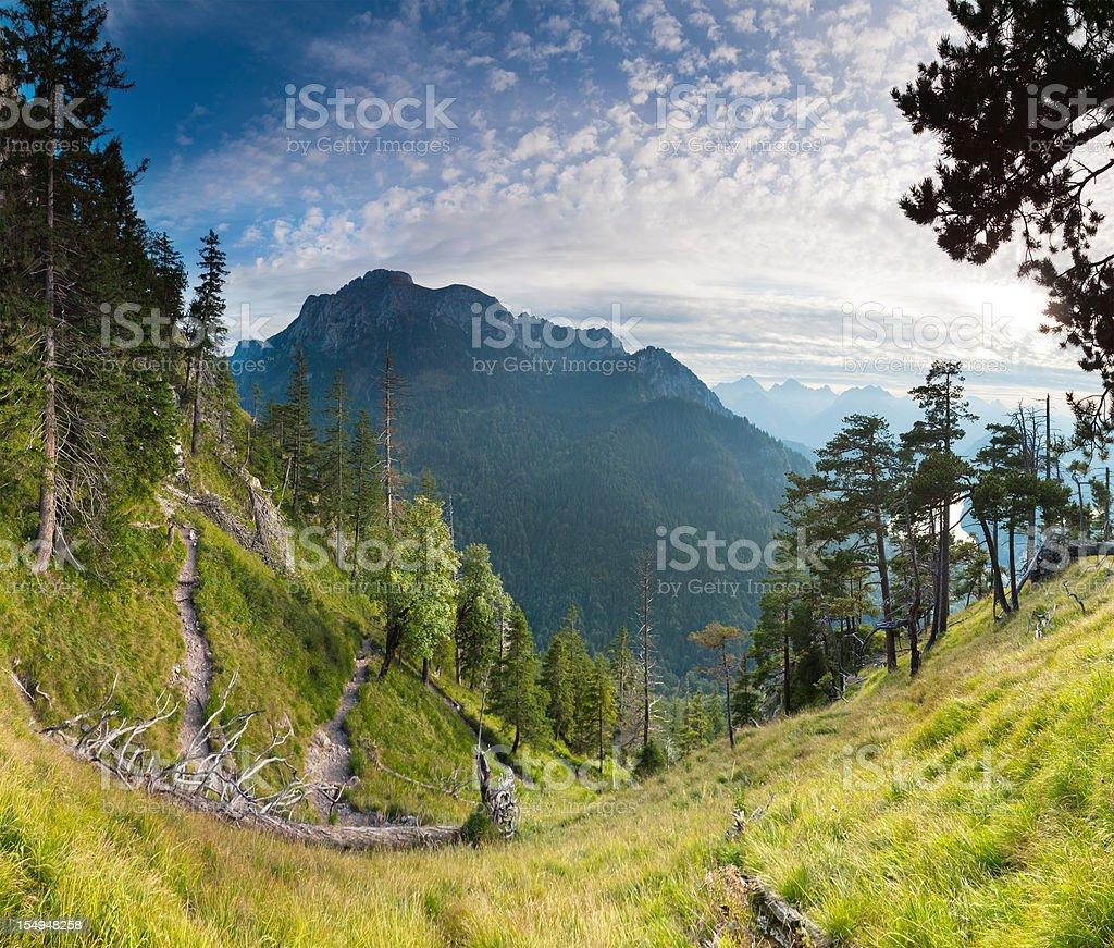 panoramic alpine view in bavaria, germany, alps royalty-free stock photo
