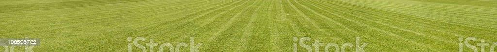 XXXL panoramic background - Footbal Grassy Playing Field royalty-free stock photo