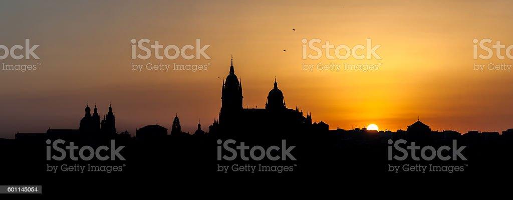 Panoramic city of Salamanca with color sky gold stock photo