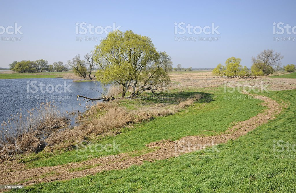 panoramic Elbe River landscape royalty-free stock photo