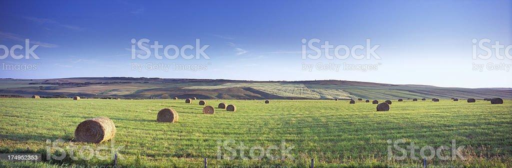 Panoramic Hay Bale Field stock photo