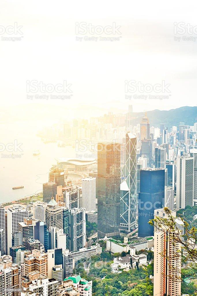 panoramic hong kong city bird eye aerial view in morning stock photo
