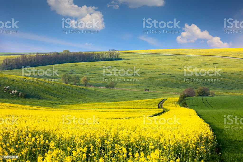 Panoramic landscape of colorful  hills with  blue sky and clouds stock photo